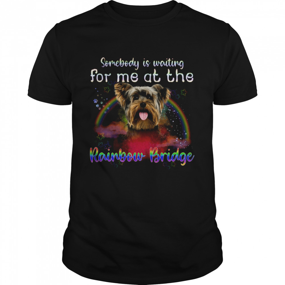 Yorkie Somebody Is Waiting For Me At The Rainbow Bridge  Classic Men's T-shirt